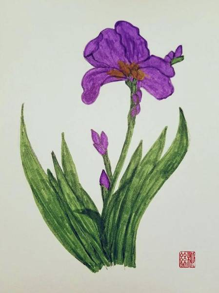 Painting - Miss Iris by Margaret Welsh Willowsilk