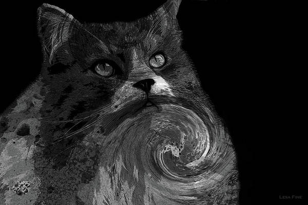 Photograph - Miss Kitty Portrait Pop Art Bw by Lesa Fine