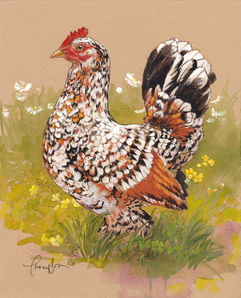 Hen Painting - Miss Millie Fleur by Tracie Thompson