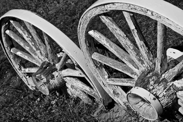 Photograph - Missing Wagon by Colleen Coccia