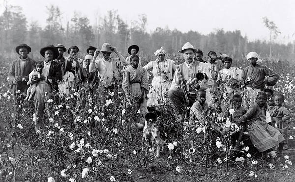 Pickers Wall Art - Photograph - Mississippi Cotton Farmer And Cotton Pickers  1908 by Daniel Hagerman