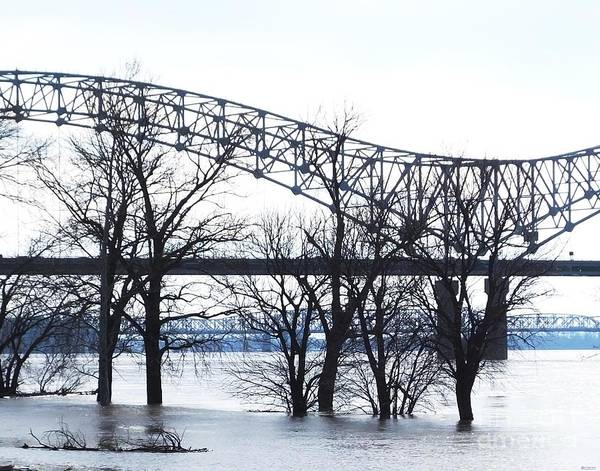 Photograph - Mississippi River At Memphis January High Water by Lizi Beard-Ward