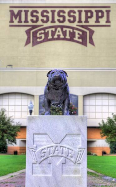 Photograph - Mississippi State by JC Findley