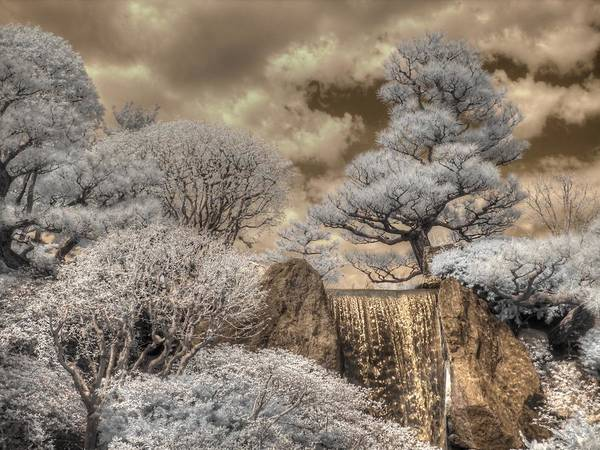 Wall Art - Photograph - Missouri Botanical Garden Waterfall Zen Japanesse Garden Infrared by Jane Linders