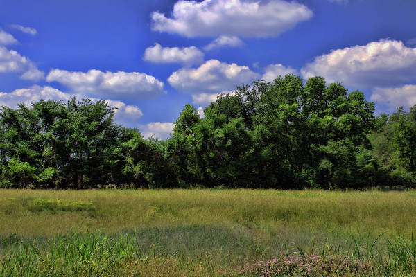 Photograph - Missouri Landscape by Tim McCullough