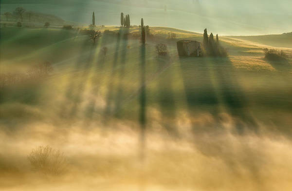 Early Morning Photograph - Mist by Krzysztof Browko