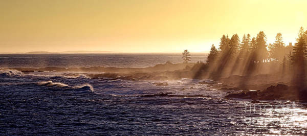 Wall Art - Photograph - Mist Off The Coast Of Maine by Olivier Le Queinec