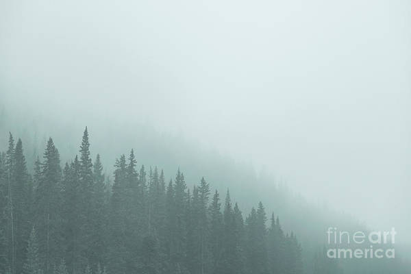 Wall Art - Photograph - Mist On The Morning Hills by Evelina Kremsdorf