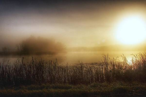 Photograph - 2201 - Mist On The Pond At The Side Of The Road by Sheryl Sutter