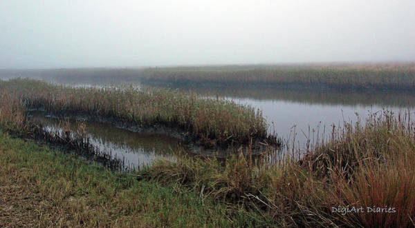 Sawgrass Digital Art - Mist Over Marsh by DigiArt Diaries by Vicky B Fuller