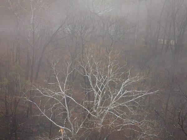 Photograph - Mist Over The Hudson by Lynda Lehmann