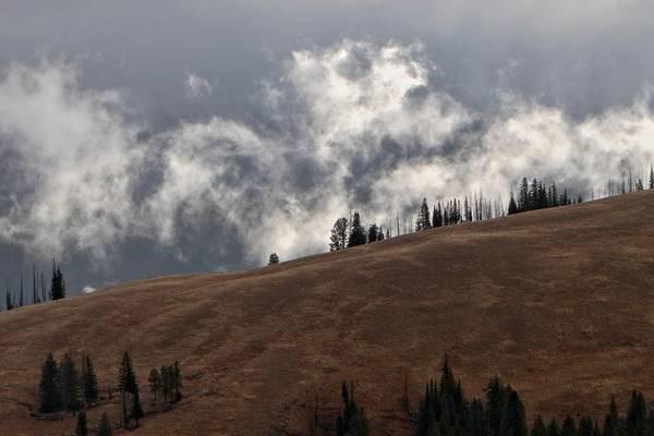 Photograph - Mist Ridge by David Andersen