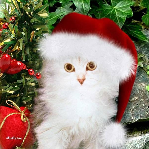 Mixed Media - Mistletoe At Christmas by Morag Bates