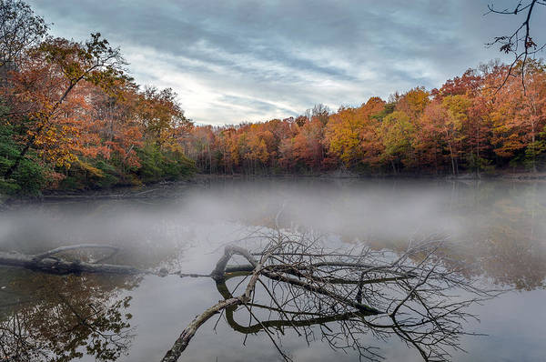 Photograph - Misty Autumn Lake by Patrick Wolf