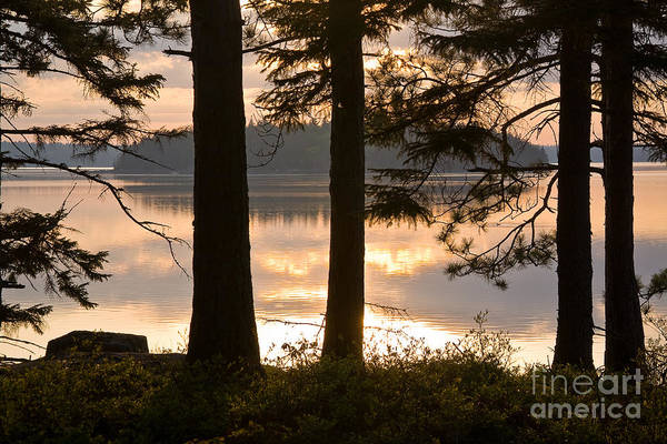 Wall Art - Photograph - Misty Bay by Susan Cole Kelly