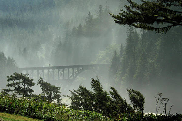 Photograph - Misty Bridge At Heceta Head by James Eddy