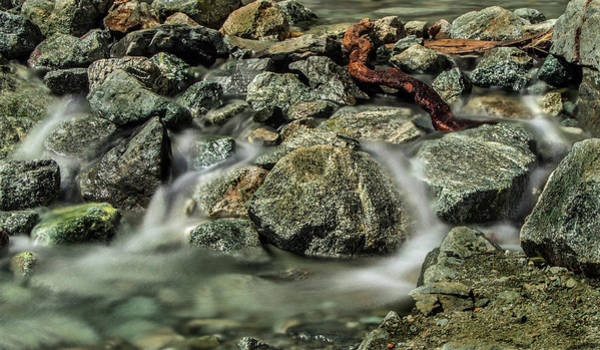 Photograph - Misty Creek by Ed Clark