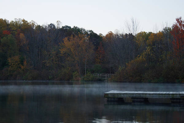 Photograph - Misty Dock by James Reed