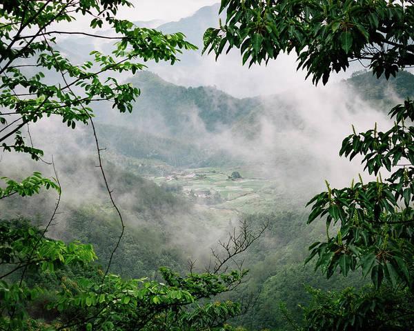Photograph - Misty Farm II by William Dickman