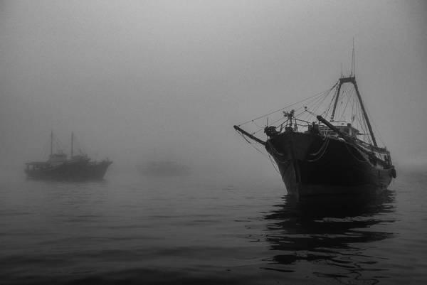 Photograph - Misty Harbor by Brad Koop