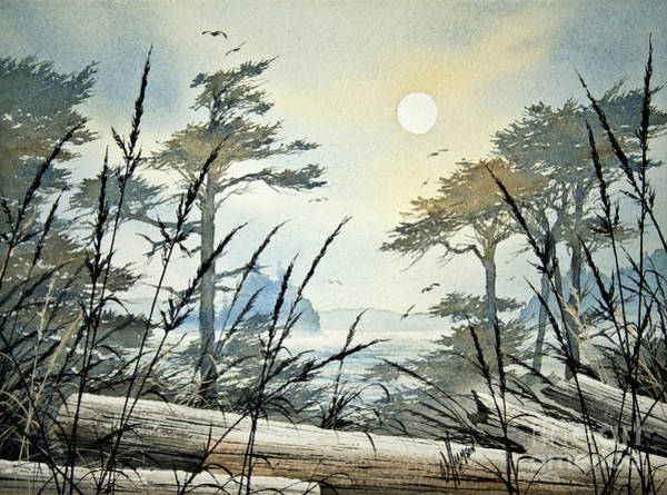 Driftwood Painting - Misty Island Dawn by James Williamson