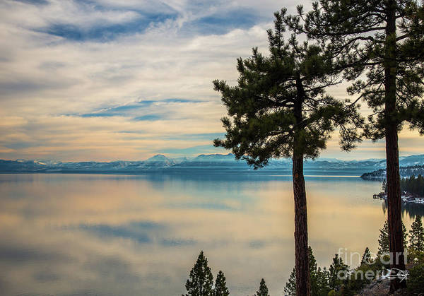Wall Art - Photograph - Misty Lake Tahoe by Vance Fox