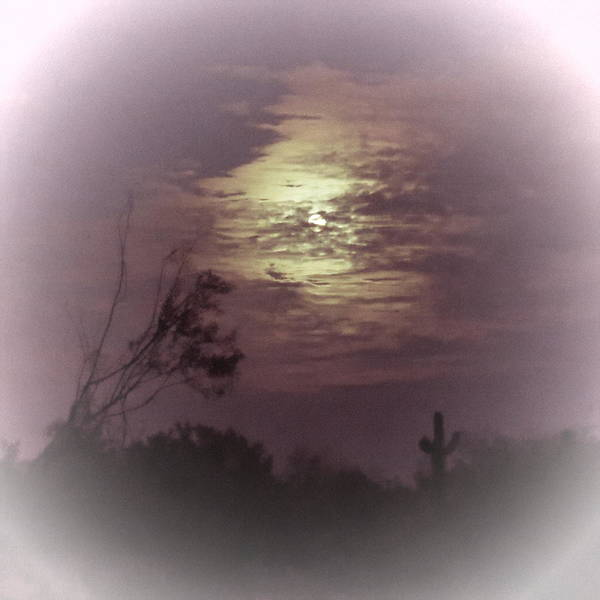 Photograph - Misty Mauve Full Moon In Gemini by Judy Kennedy