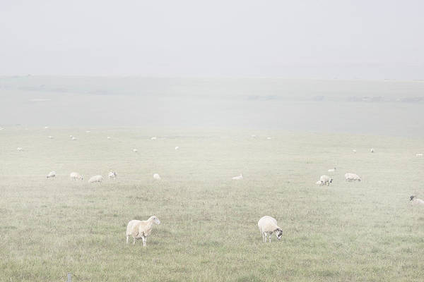 Wall Art - Photograph - Misty Moors by Martin Newman