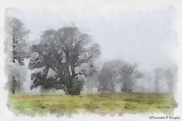 Photograph - Misty Morn by Paulette B Wright
