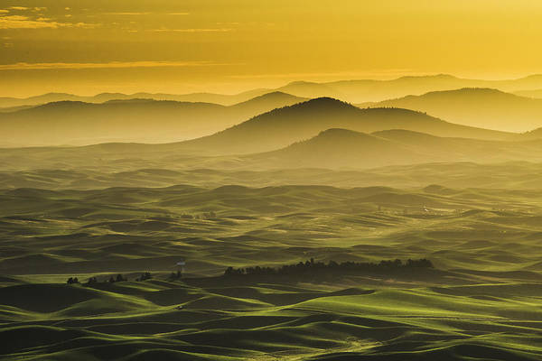 Photograph - Misty Morning At Palouse. by Usha Peddamatham