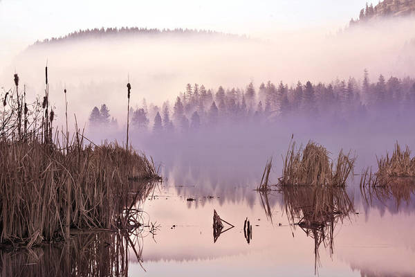 Wall Art - Photograph - Misty Morning At Vaseux Lake by John Poon