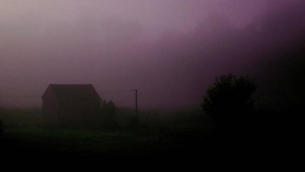 Photograph - Misty Morning by Danielle R T Haney