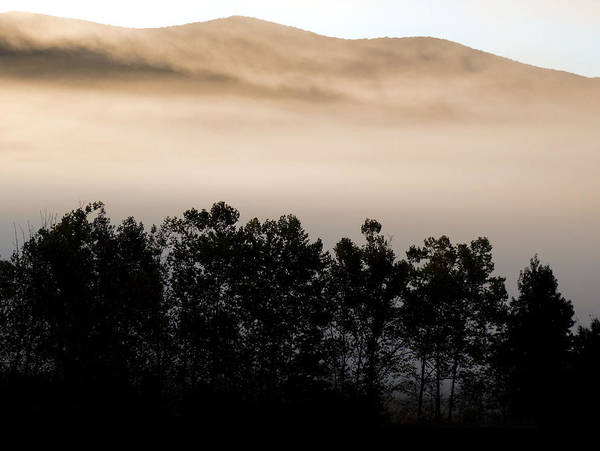 Photograph - Misty Morning Fog In Cades Cove by Dan Sproul