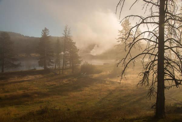 Photograph - Misty Morning by Gary Lengyel