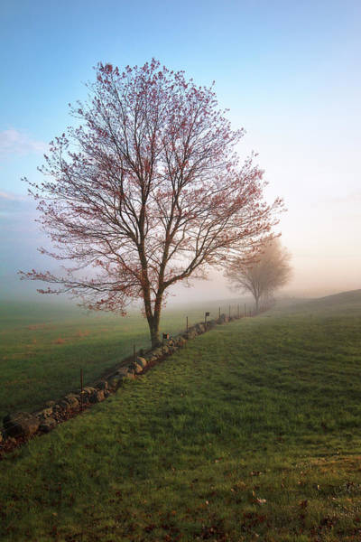 Wall Art - Photograph - Misty Morning In New Hampshire by Eric Gendron
