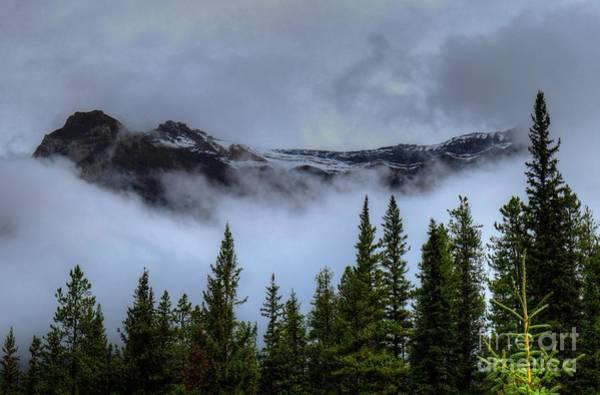 Photograph - Misty Morning Jasper National Park by Wayne Moran