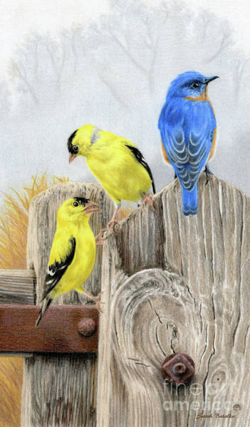 Wall Art - Painting - Misty Morning Meadow- Goldfinches And Bluebird by Sarah Batalka