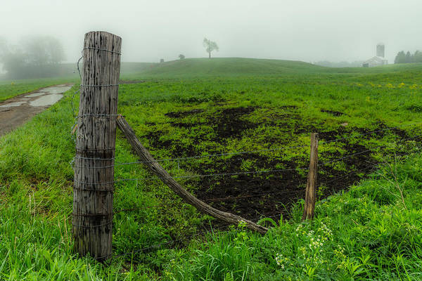 Photograph - Misty Morning Pasture by Chris Bordeleau