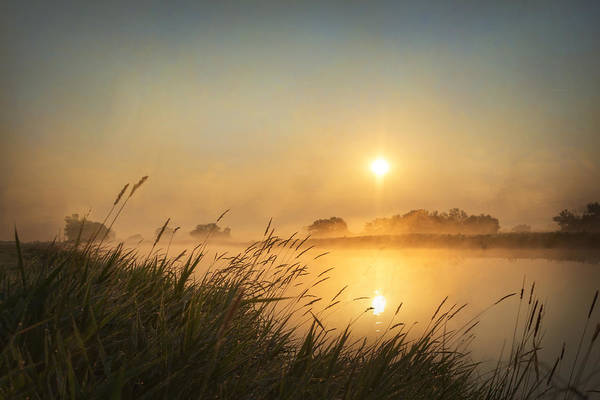 Photograph - Misty Morning by Ramona Murdock