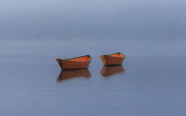 Photograph - Misty Morning by Rob Davies