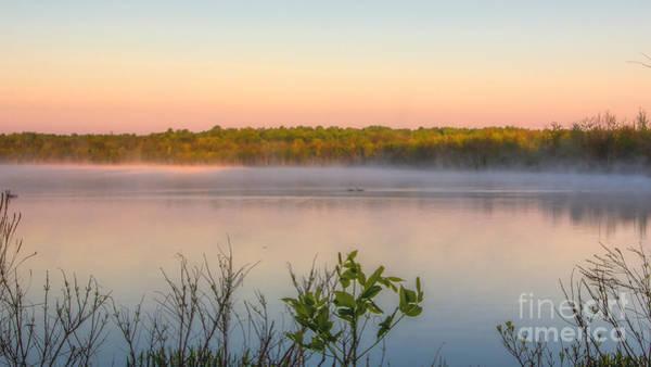 Photograph - Misty Morning by Rod Best