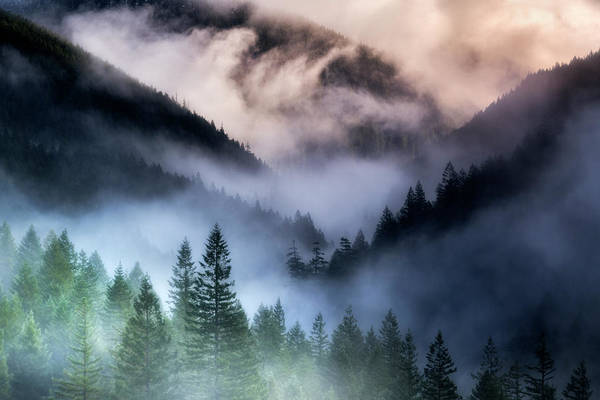 Stormcloud Photograph - Misty Mornings by Nicki Frates