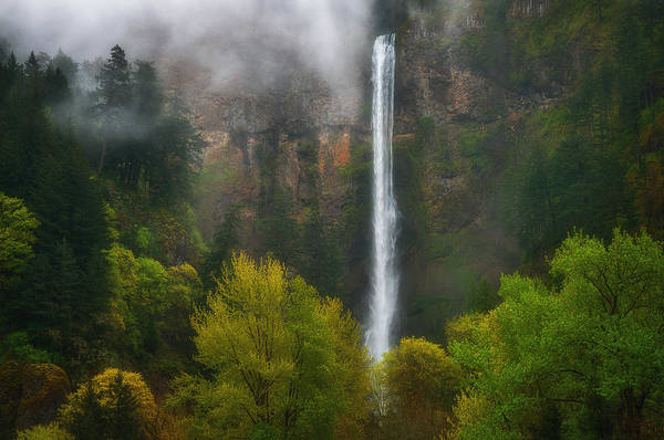 Photograph - Misty Multnomah by Darren  White
