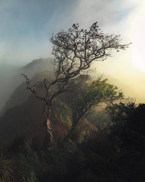 Cathedral Photograph - Misty Na Pali by Tor-Ivar Naess