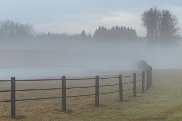 Photograph - Misty Pasture by Rod Best