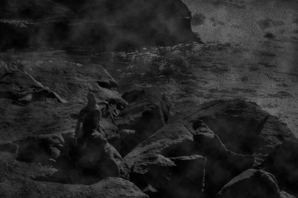 Photograph - Misty Sea by Maria Reverberi