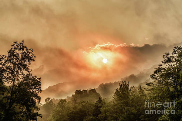 Photograph - Misty Sunrise On The Mountain  by Thomas R Fletcher