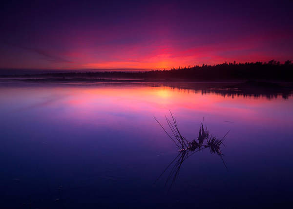 Wall Art - Photograph - Misty Sunset At Singing Sands Beach by Cale Best