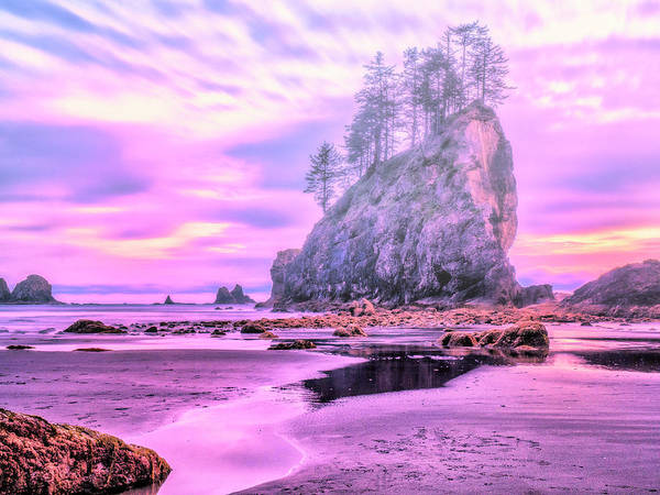 Wall Art - Photograph - Misty Sunset - Olympic Peninsula by Dominic Piperata