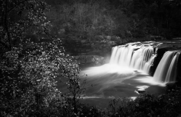 Photograph - Misty Tranquility by Parker Cunningham